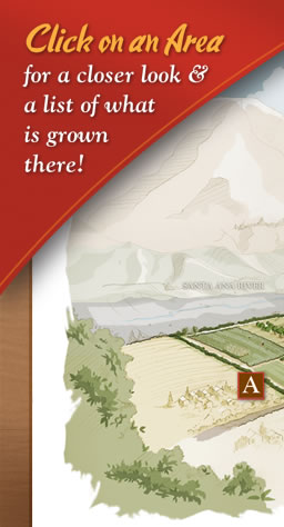 Jacinto Farms | Click on an Area for a closer look & a list of what is grown there!