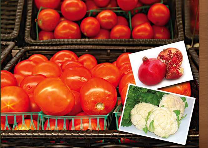 Jacinto Farms | December - Hot House Tomatoes, Winter Squash, Cauliflower, Broccoli, Pomegranates, Persimmons